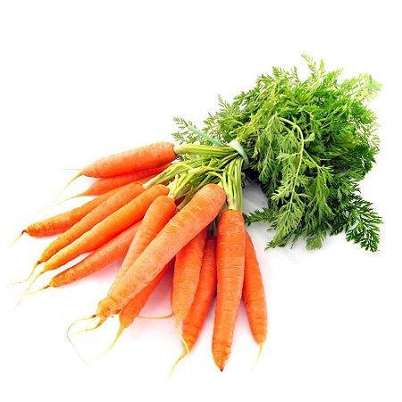 Cenoura (Molho)
