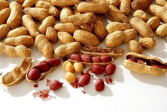 Amendoim (500gr)