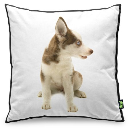 Almofada Love Dogs Black Edition - Husky Siberiano