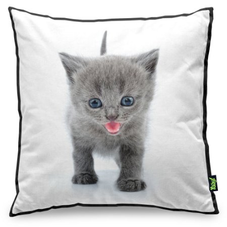Almofada Love Cats Black Edition - British Grey