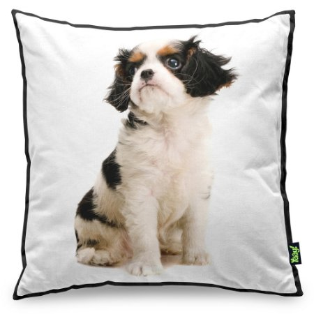 Almofada Love Dogs Black Edition - Japanese Chin