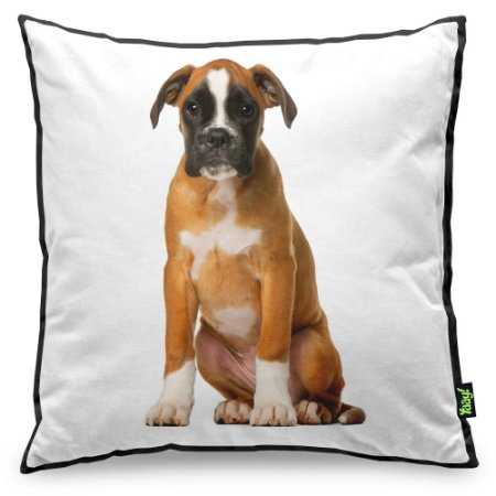 Almofada Love Dogs Black Edition - Boxer