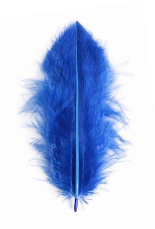 Pena Azul Marinho I - Coleção Pena