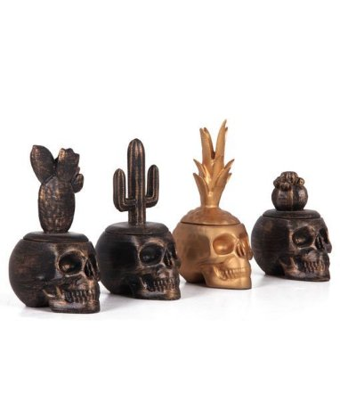 Jogo 4 Potes caveira ( Abacaxi e Cactus )