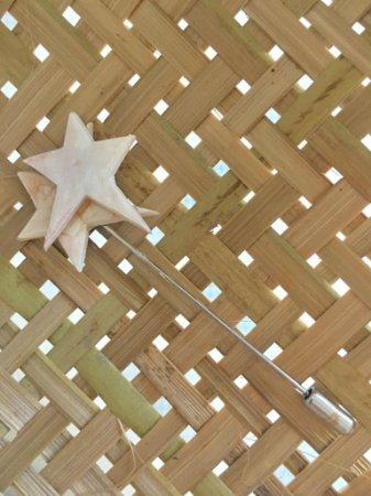 Pin Estrela