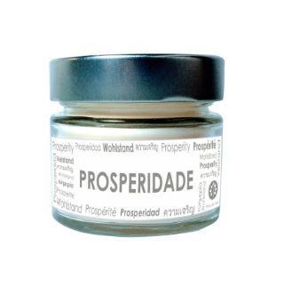Vela Perfumada Pavio de Vela: PROSPERIDADE (125g)