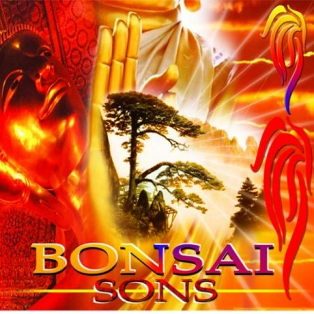 CD Bonsai Sons New Age - Músicas belíssimas