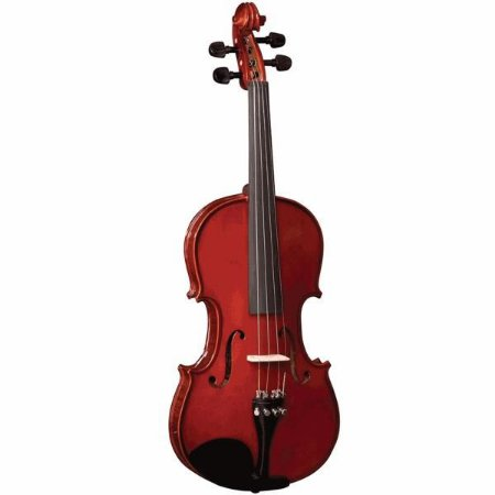 VIOLINO VE144 RAJADO EAGLE            UN