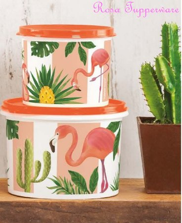 Tupperware Caixa Flamingo 500 ML + 1 Litro