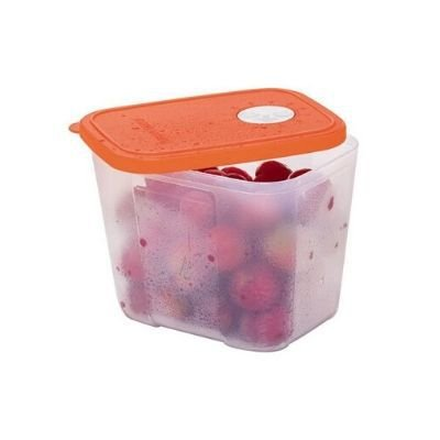 Tupperware Pote Freezertime Laranja 1 Litro