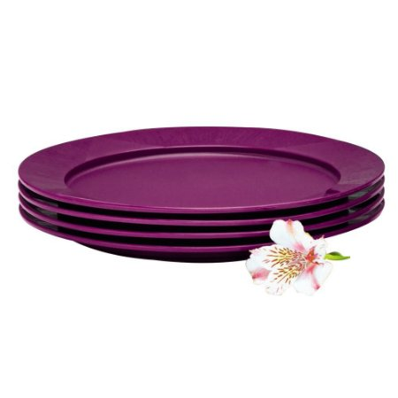Tupperware 4 Pratos Outdoor