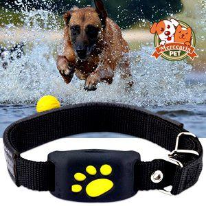 Rastreador GPS para cães