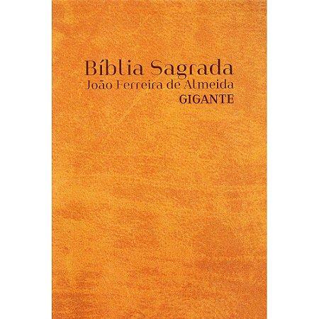 Bíblia Rc Gigante C/Mapa Lateral Artística - Caramelo