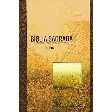 Bíblia Sagrada Nvi Grande - Capa Brochura - Neutra