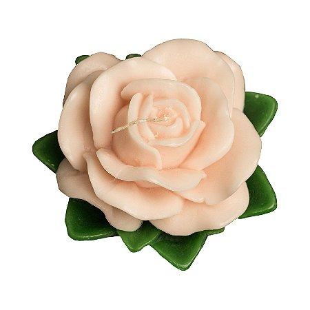 Rosa Aberta com Folha Verde Pequena