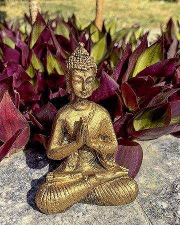 Buda Hindu mini Meditando