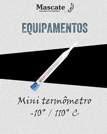 Termômetro -10°C / 110°C