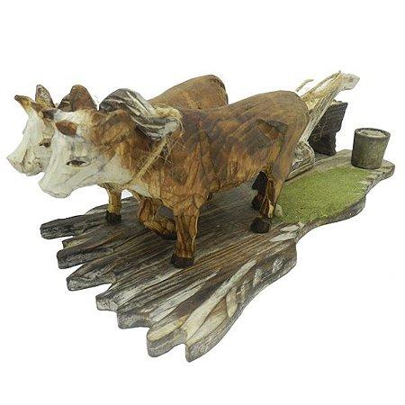 Vaca Puxando Arado