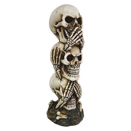 Decorativo Cranio Caveira de Resina