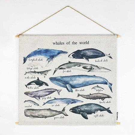 Quadro Bandeira Baleias do Mundo
