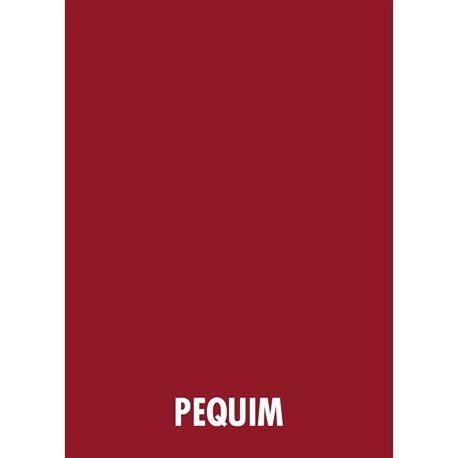 300 Folhas Papel Color Plus A4 Vermelho Pequim 180g Massa Colorida