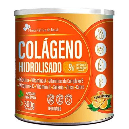 Colageno Hidrolisado Com Vitaminas e Minerais 300g - Flora Nativa