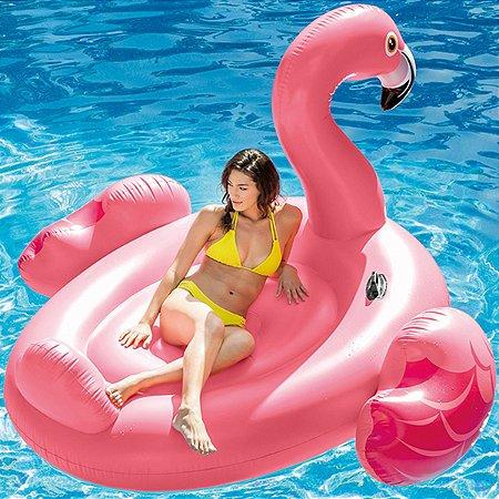 Boia Flamingo Adulto Gigante Intex 56288