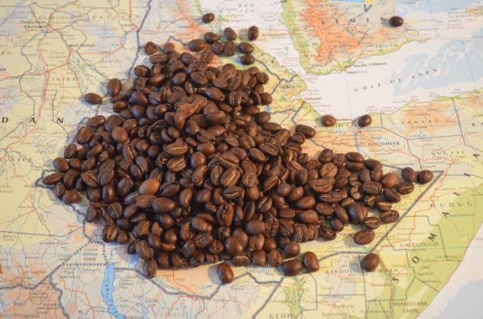 Café AFRICANO torrado em Grãos 500g País de origem Etiópia região Yayu Wild Forest