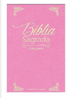 BIBLIA ROSA A4