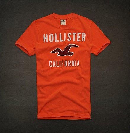 Camiseta Masculina Holli Aber A&F Modelo 21