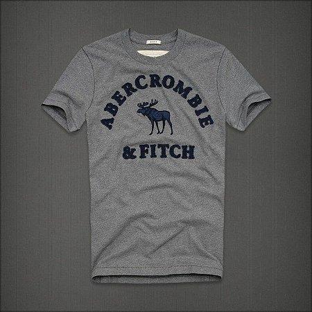 Camiseta Masculina Holli Aber A&F Modelo 42