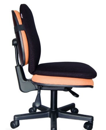 Protetor de Cadeira Lombar