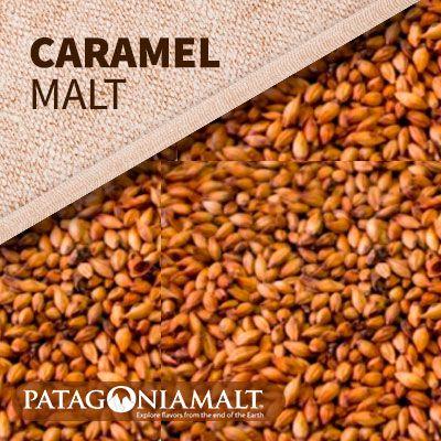 MALTE PATAGONIA CARAMELO 15L/40EBC