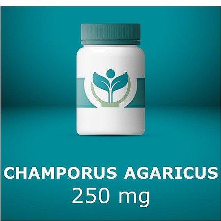 Champorus agaricus
