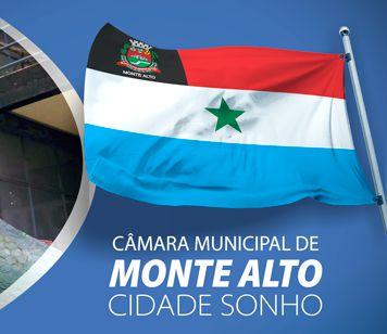 Câmara de Monte Alto - Auxiliar Técnico Legislativo (prova em 17/03/2019)