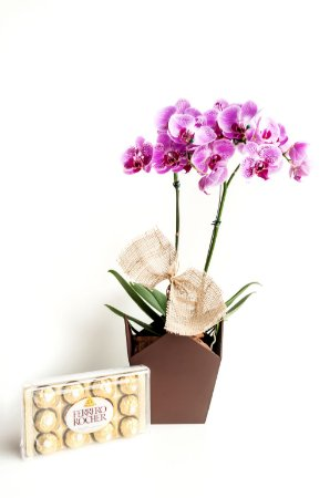 Luxuosa Orquídea Exótica com Ferrero Rocher