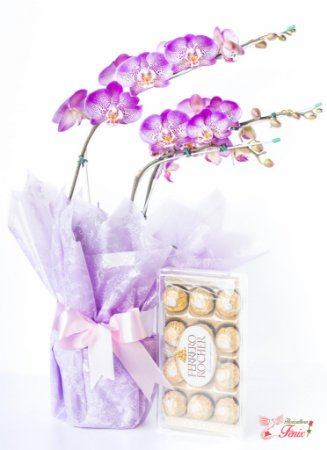 Orquídea Phalaenópsis com Ferrero Rocher