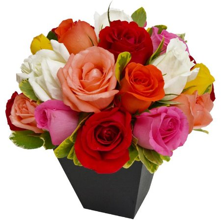 Arranjo de 20 Rosas Coloridas Nacionais