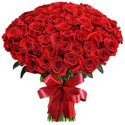 Mega Buquê de 100 Rosas Colombianas Vermelhas