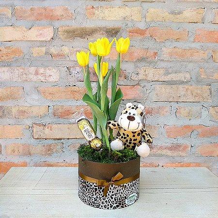 Ternura de tulipa com pelúcia e chocolate