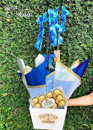 Elegante Orquídea Azul com Ferrero Rocher