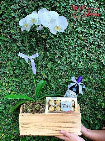 Luxuoso Kit Orquídea Vinho e Chocolate