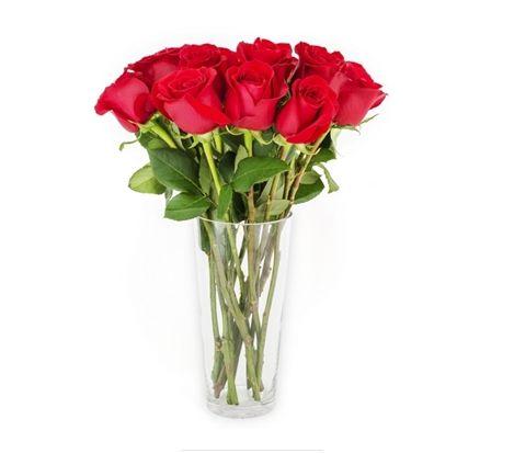 Buquê 10 Rosas em vaso