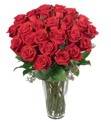 30 Rosas em Vaso
