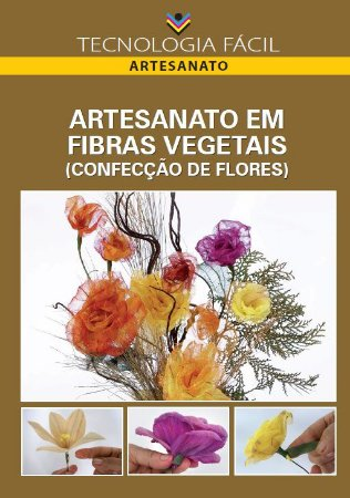 Artesanato em fibras vegetais (confecção de flores) - autor Christus Menezes da Nóbrega, Luzinete da Silva Machado e Marx Lamare Félix