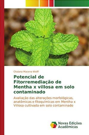 Potencial de Fitorremediação de Mentha x villosa em solo contaminado