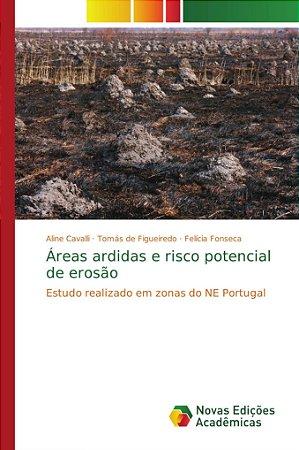 Áreas ardidas e risco potencial de erosão