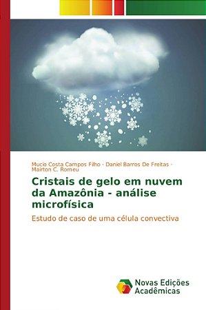 Cristais de gelo em nuvem da Amazônia - análise microfísica