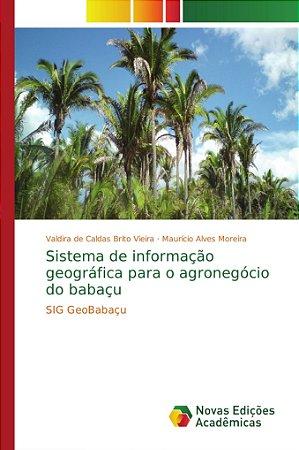 Sistema de informação geográfica para o agronegócio do babaç