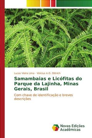 Samambaias e Licófitas do Parque da Lajinha; Minas Gerais; B